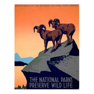 Parques nacionales tarjetas postales