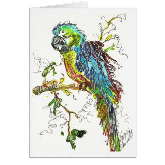 Parrot 1 stationery note card