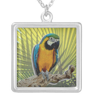 Parrot #1 with palms square pendant necklace