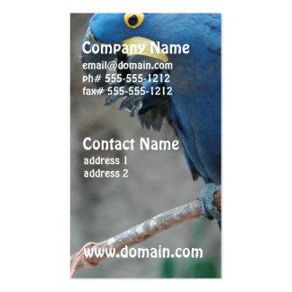 parrot-23 tarjetas de negocios