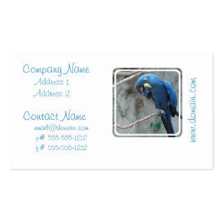 parrot-23 plantillas de tarjetas personales