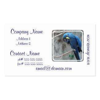parrot-23 plantillas de tarjetas de visita