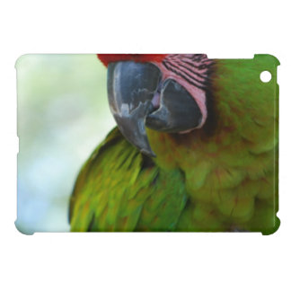 parrot-63.jpg iPad mini case