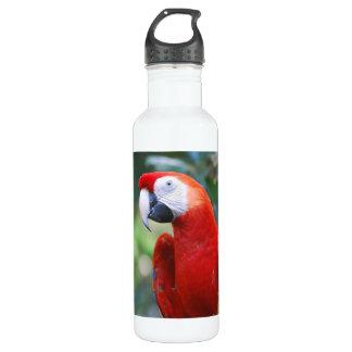 parrot-77 24oz water bottle