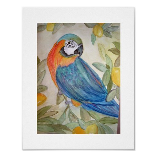 Parrot and Lemons Poster