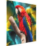 Parrot Art 1 Canvas Print