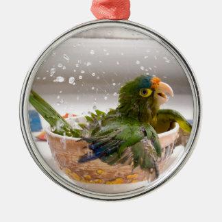 Parrot Bath Time Fun Metal Ornament