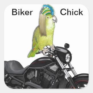 Parrot Biker Chick on Harley Davidson Square Sticker