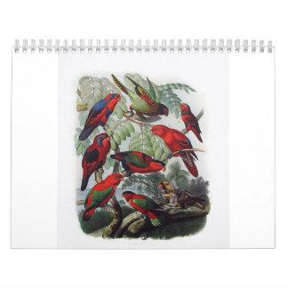 parrot, bird collection calendar