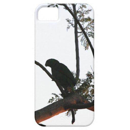 Parrot Bird iPhone 5 Case
