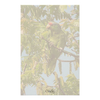 Parrot Bird Stationery