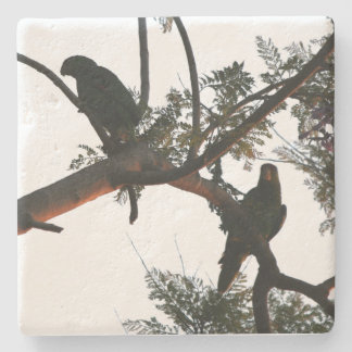 Parrot Bird Wildlife Animal Stone Coaster