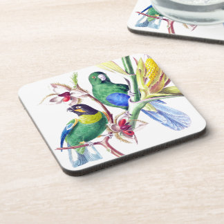 Parrot Birds Wildlife Animals Jungle Coaster