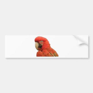 Parrot black outline. bumper sticker