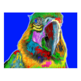 Parrot (brushed) postcard