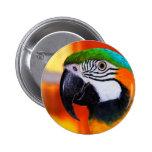 Parrot Button