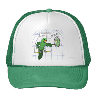 Parrot Cage Fight Hat