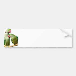 parrot car bumper sticker