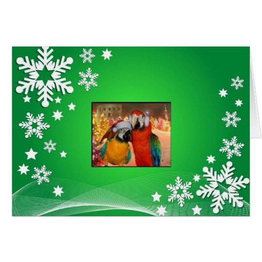Parrot Card Green