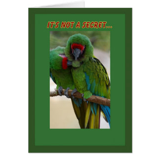 Parrot Couple Birthday Card