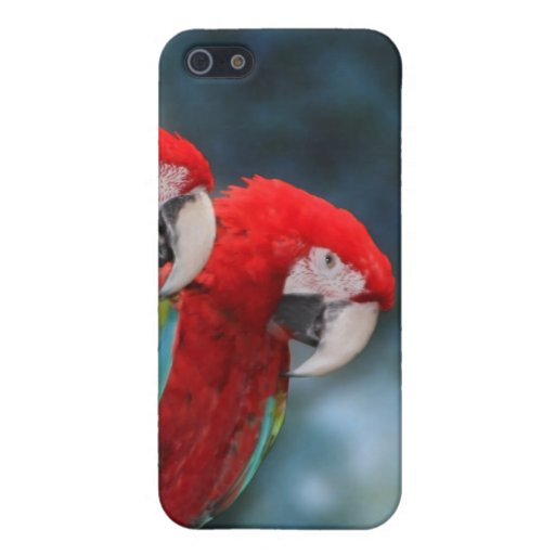 Parrot Couple Cover For iPhone 5
