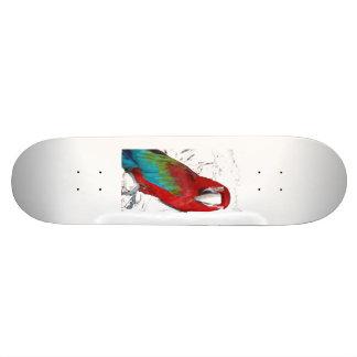 Parrot Deck Skateboard Deck