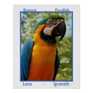 Parrot English, Loro Spanish Print
