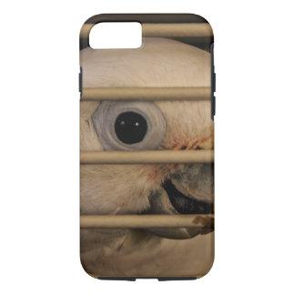Parrot Eye iPhone 8/7 Case