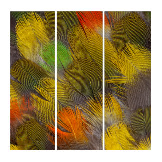 Parrot Feather Design Triptych
