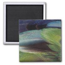 Parrot feather pattern design magnet