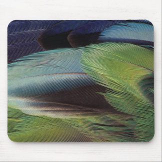 Parrot feather pattern design mouse pad