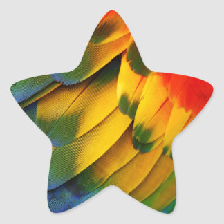 Parrot Feathers Star Sticker