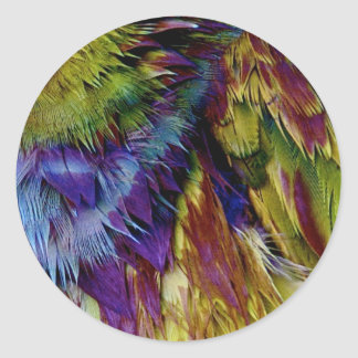 Parrot Feathers Round Sticker