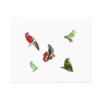 Parrot Flock Canvas Print