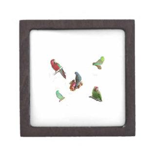 Parrot Flock Keepsake Box