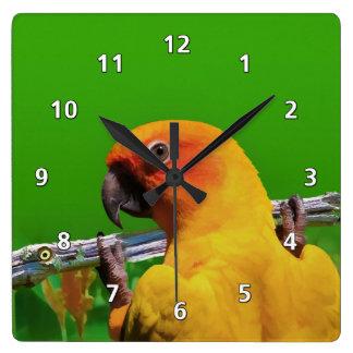 Parrot Hanging on a Limb Clock