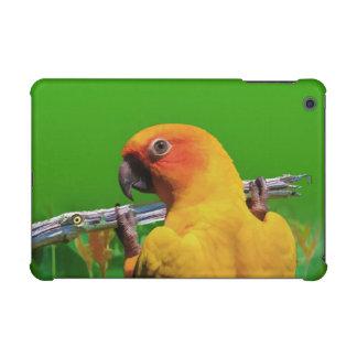Parrot Hanging on a Limb iPad Mini Cover