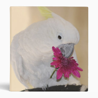 Parrot He loves me or not Binder