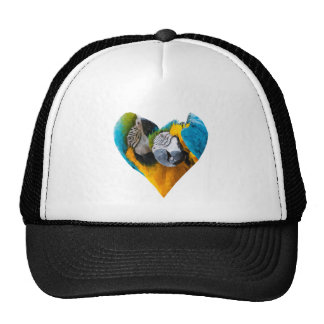 Parrot Heart Hat