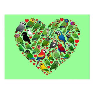Parrot Heart Post Card