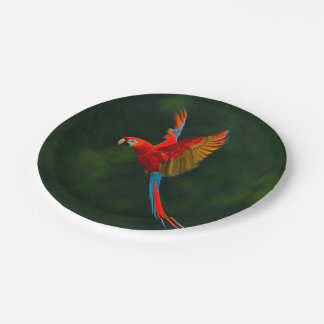 Parrot in Flight Paper Plate