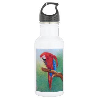 parrot in pastel 18oz water bottle