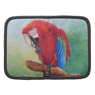 parrot in pastel planner