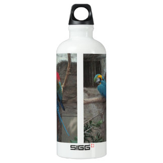 Parrot Liberty SIGG Traveler 0.6L Water Bottle