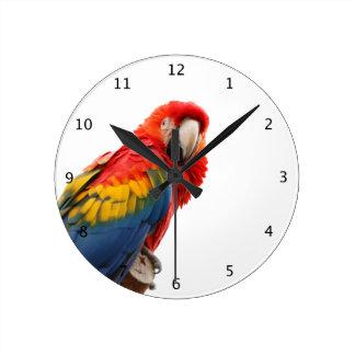Parrot, macaw bird beautiful photo round wallclocks