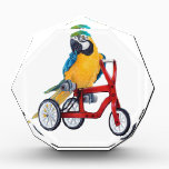 """Parrot Macaw on Tricycle bike Acrylic Award<br><div class=""""desc"""">Parrot Macaw on Tricycle bike</div>"""