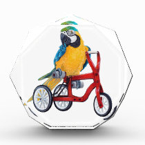 Parrot Macaw on Tricycle bike Acrylic Award