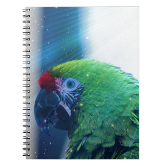 Parrot Notebooks