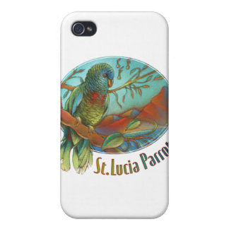 Parrot of St Lucia iPhone 4/4S Cover