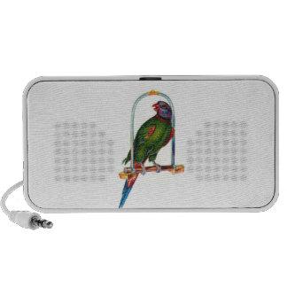 Parrot on Swing Doodle Speaker